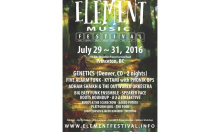 Element festival aims to build reputation