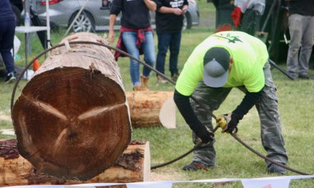 Long history of Loggers' Sports
