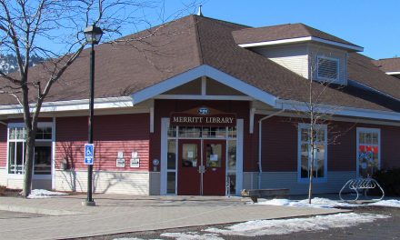 VIP program for grade threes added to library