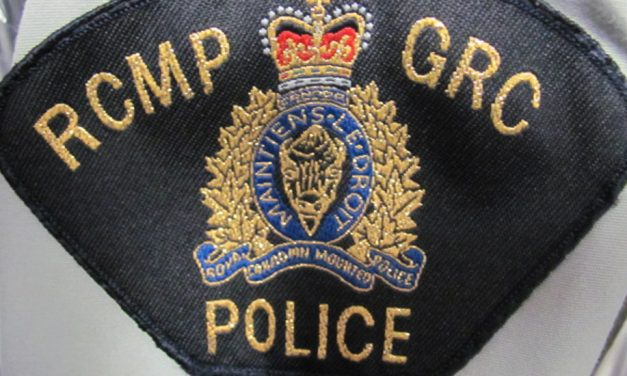 RCMP: don't let the Grinch steal your Xmas cheer
