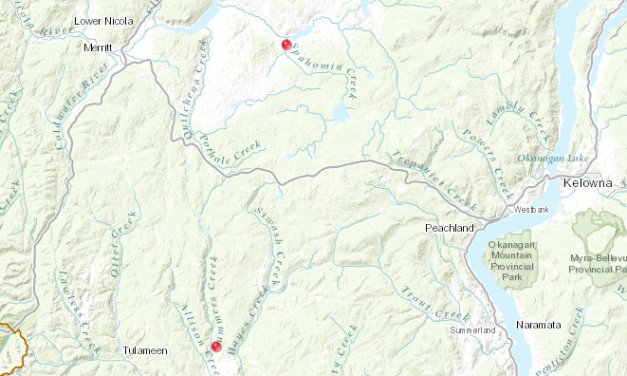 UPDATED: Wildfire near Douglas Lake grows to 112 hectares