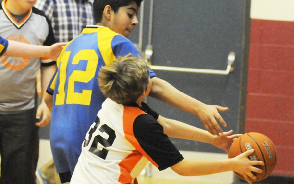 Cougars dominate basketball tourney
