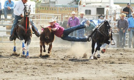 GALLERY: 2017 Nicola Valley Pro Rodeo