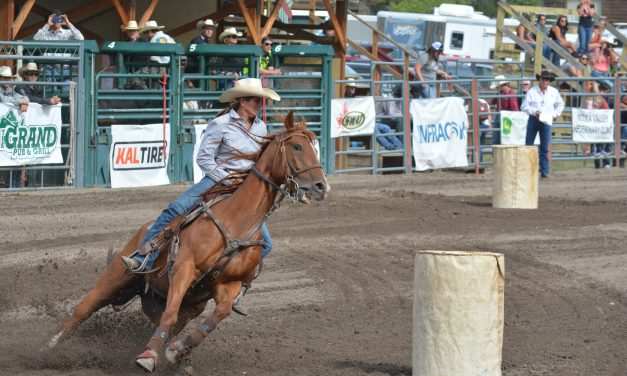 Rodeo association, curling club approved for sporting grants